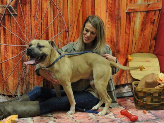 girl with dog and wagon wheel