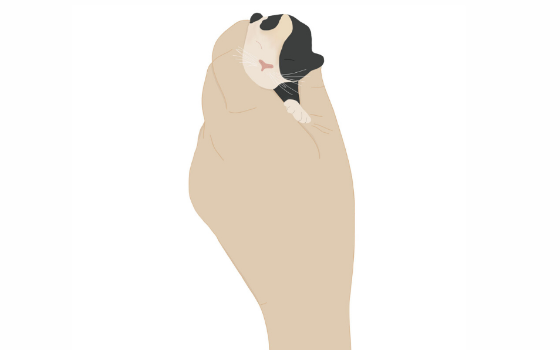 Illustrated hand holding tiny kitten