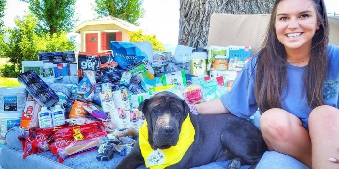 rescue dog with products
