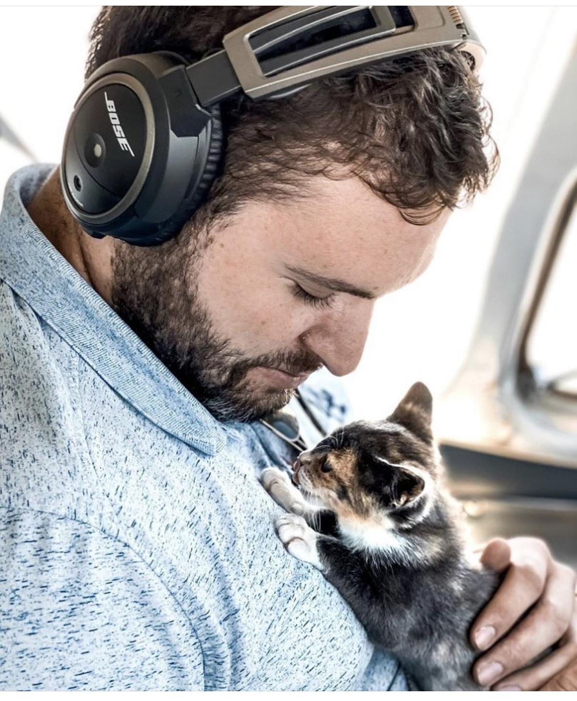 kitten held in cockpit by airline pilot