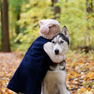 child hugging huskey