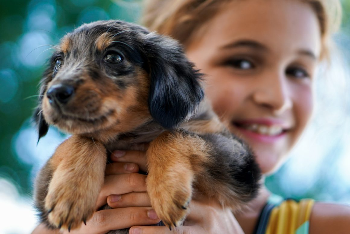 girl with speckled puppy