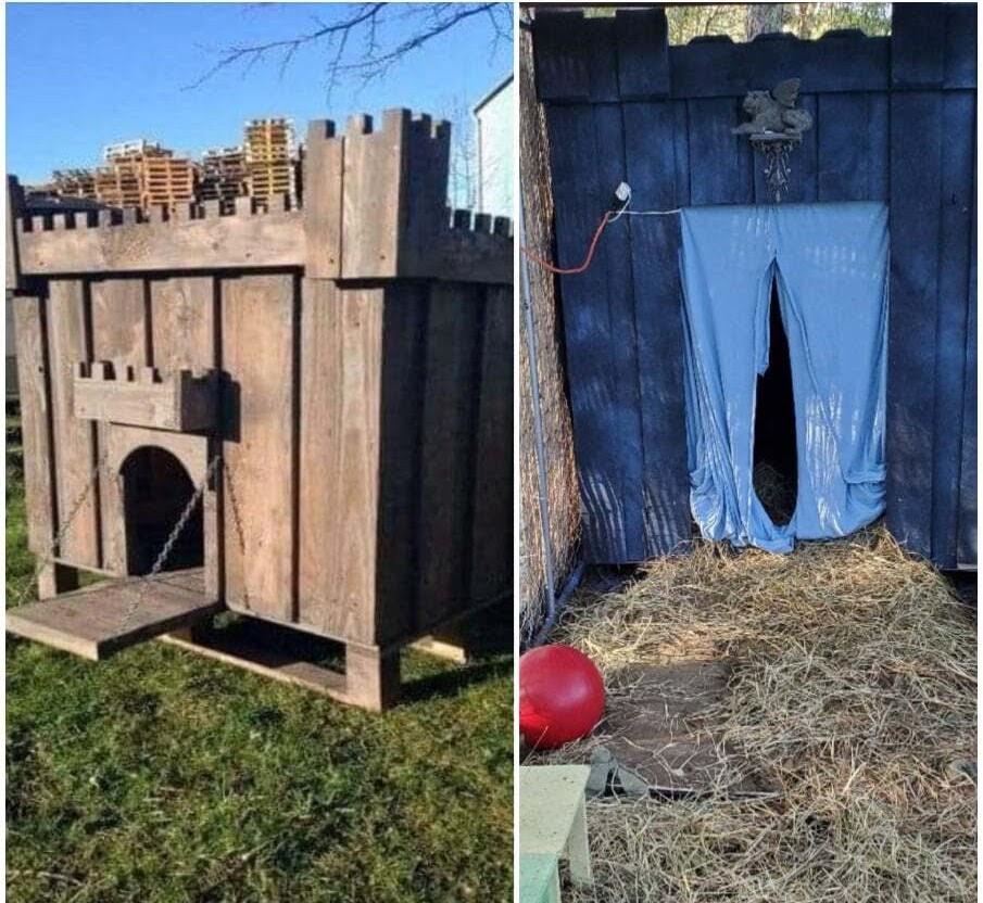 castle dog house