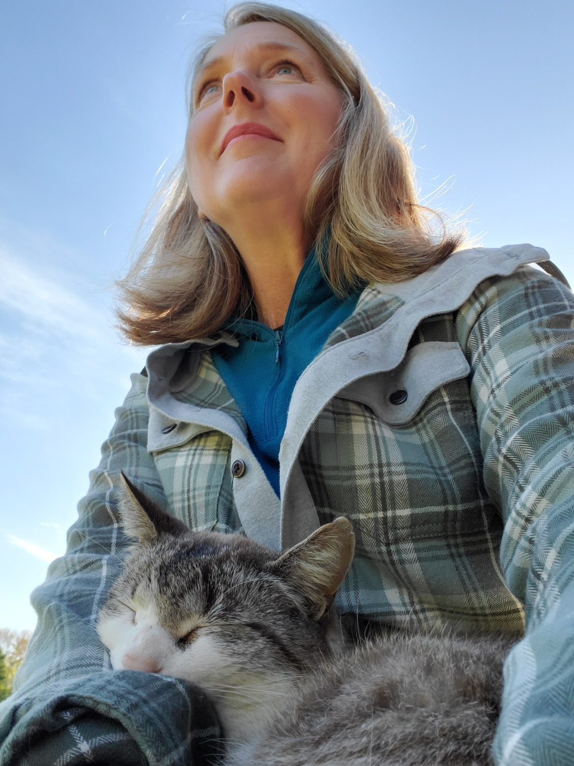 cat and betsy saul