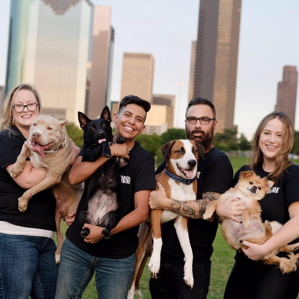 volunteers holding dogs