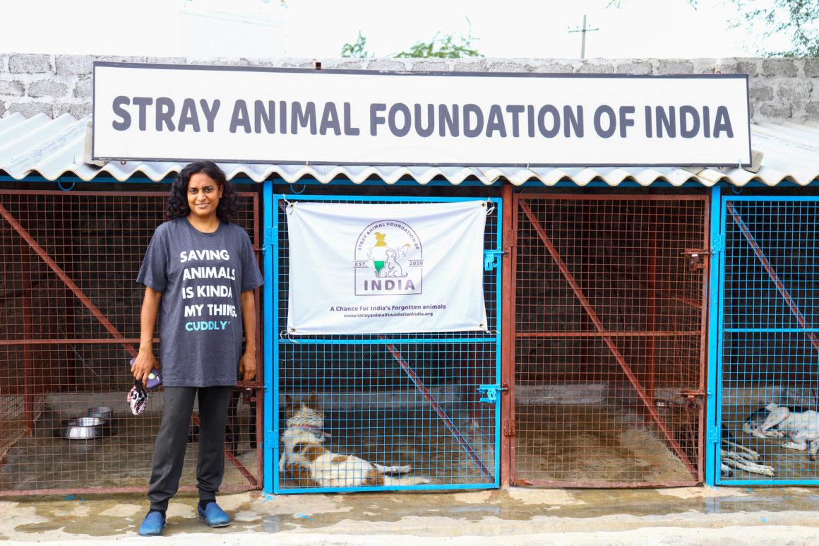 stray animal foundation sign