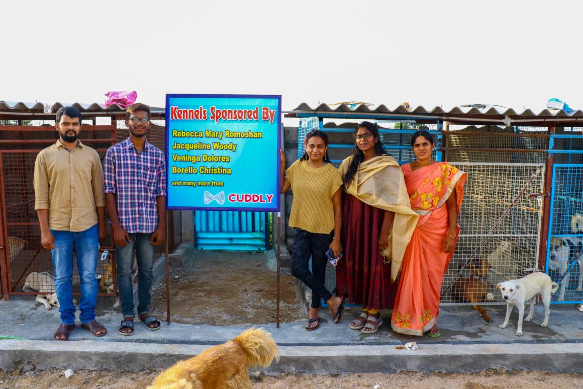 stray animal foundation women in india