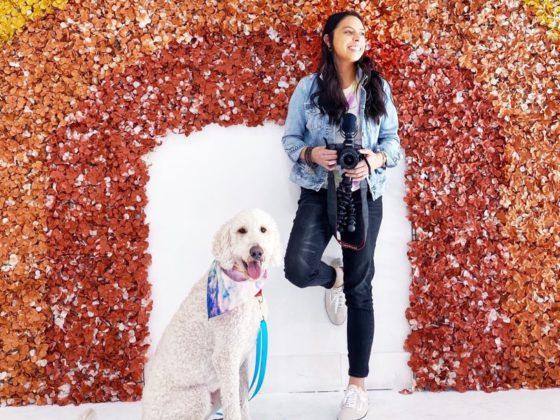 rachel fusaro and dog with rainbow